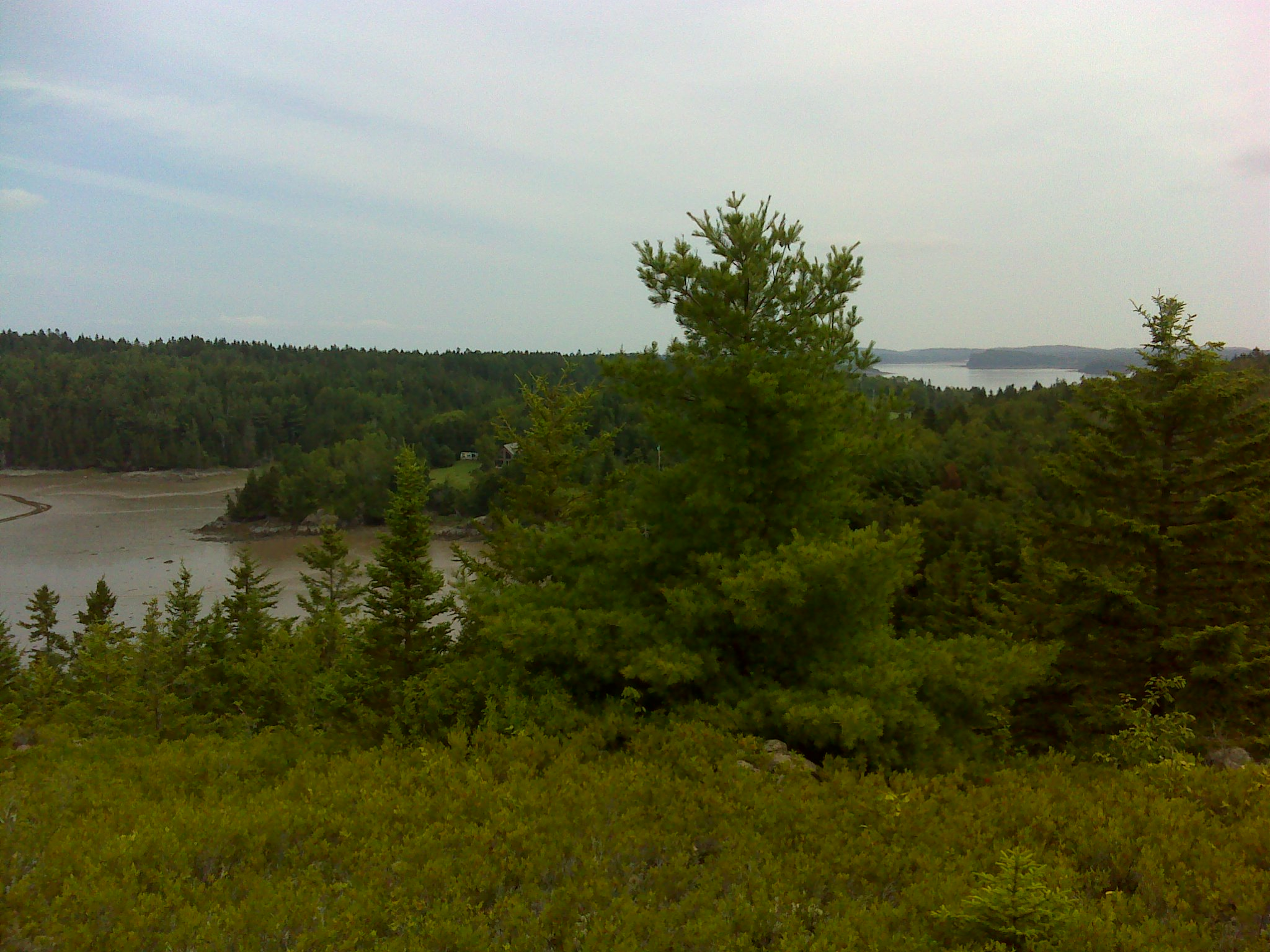 Looking north beyond South Bay to the main body of Cobscook Bay