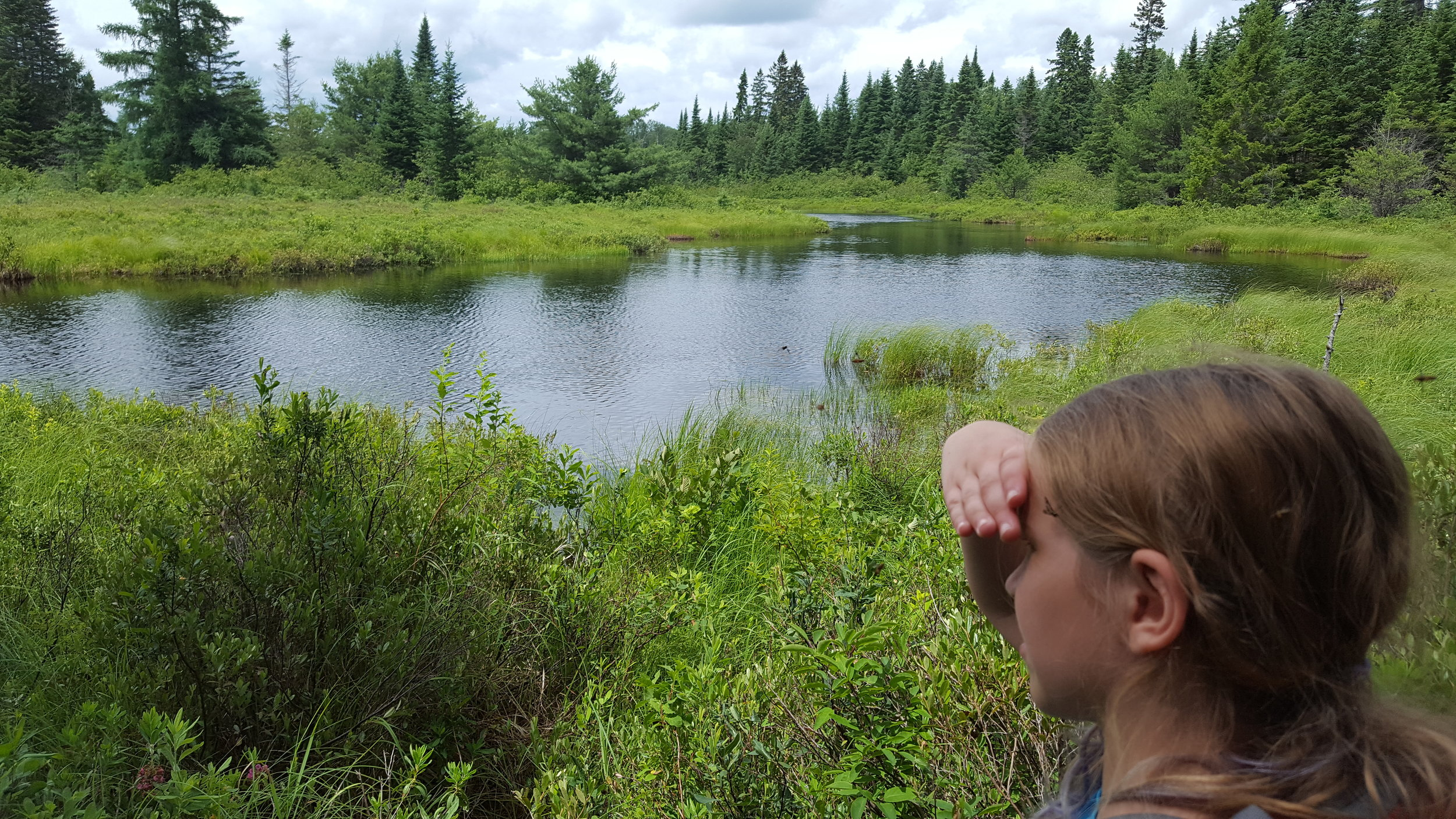 Wadleigh Brook--notice the blackflies on Emma.