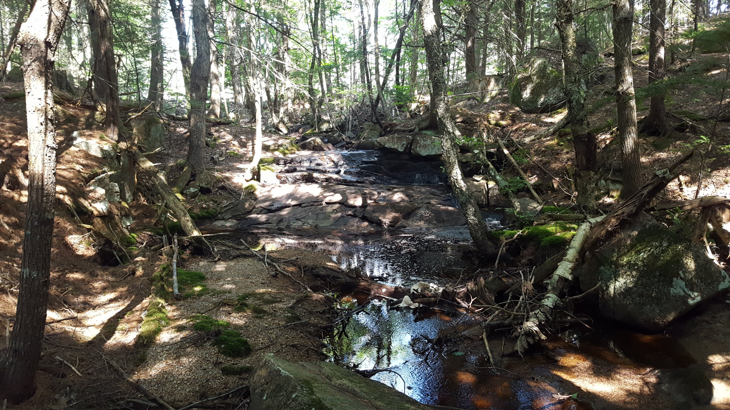 The small waterfall (didn't make the cut for my Hiking Maine's Waterfalls)