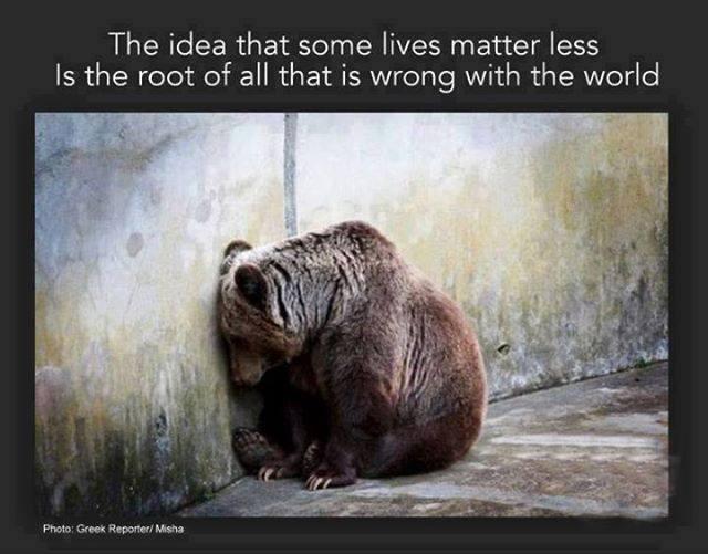 Some lives matter less.jpg