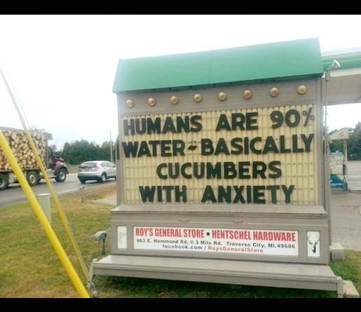 Cucumbers with Anxiety.jpg