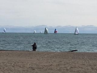 sailboats on a Saturday.jpeg