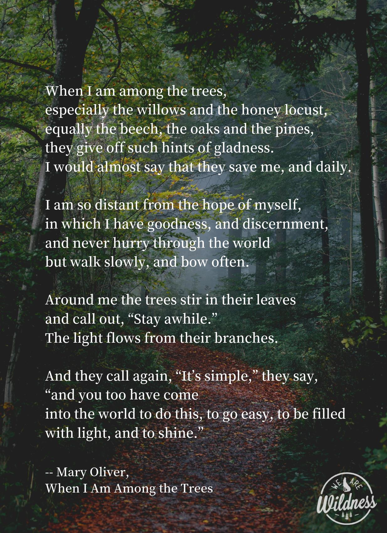 when I am among the trees.jpg