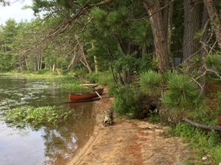 Red canoe.jpeg