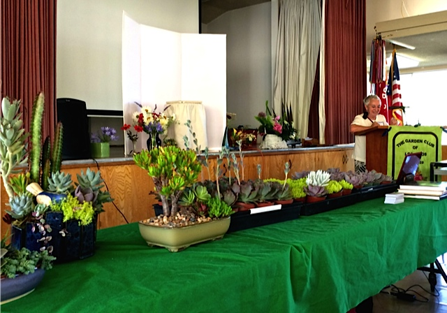 "President Pat Ley is all set to commence the June 28, 2016, meeting of The Garden Club of Los Altos featuring Laura Balaoro's program ""Gardening with Succulents in Santa Clara County"