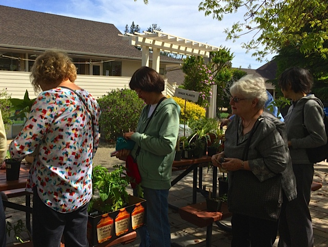 Ellen Chu and Pat Hirschbeck in line to purchase at the plant sale