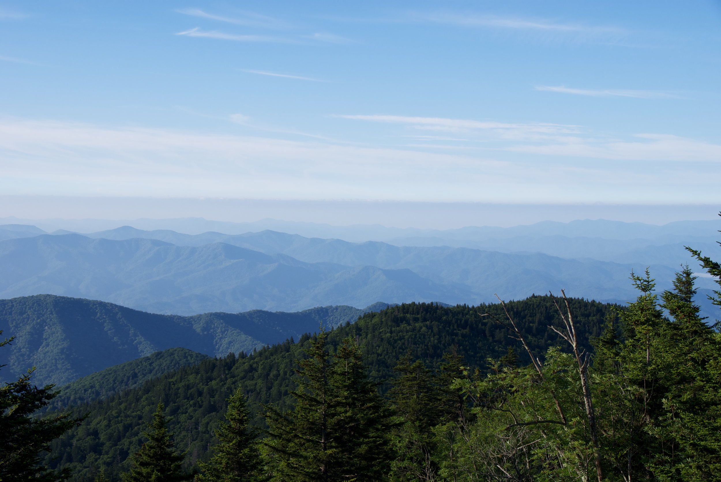 A beautiful July Morning in the Smokies