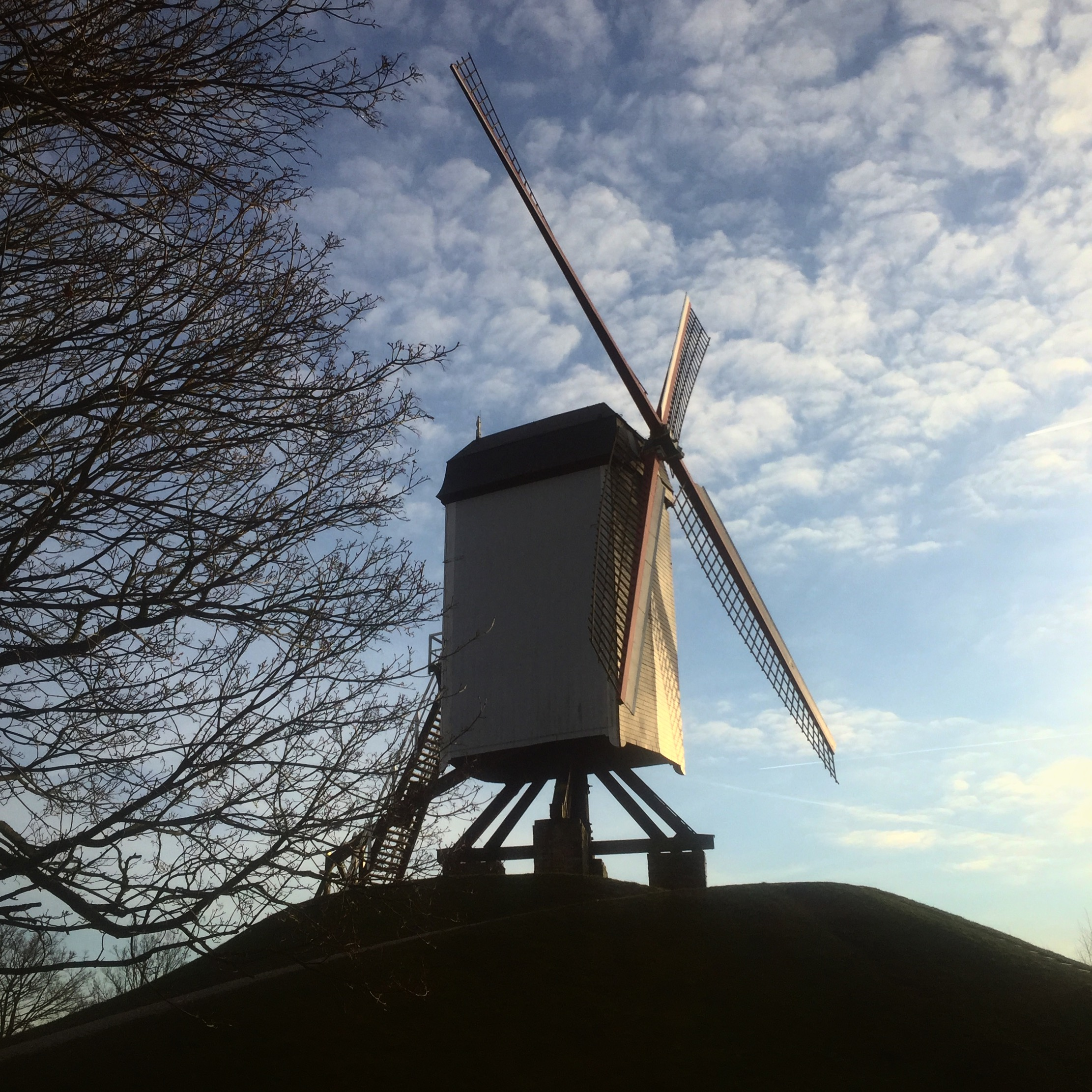 Bonne Chiermolen, one of four remaining timber-stilt windmills in Bruges