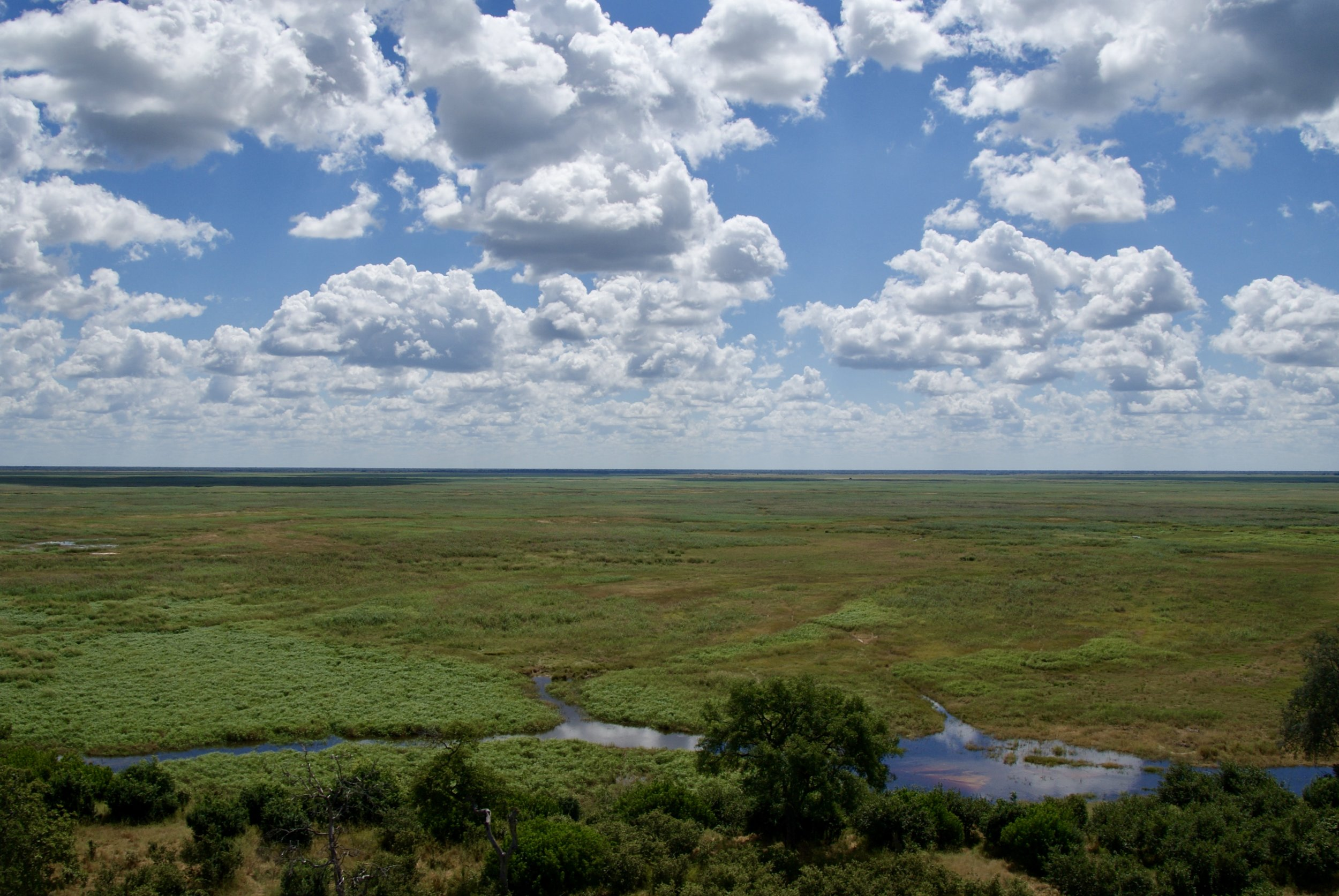 The Vast Expanse of the Linyanti Wetlands