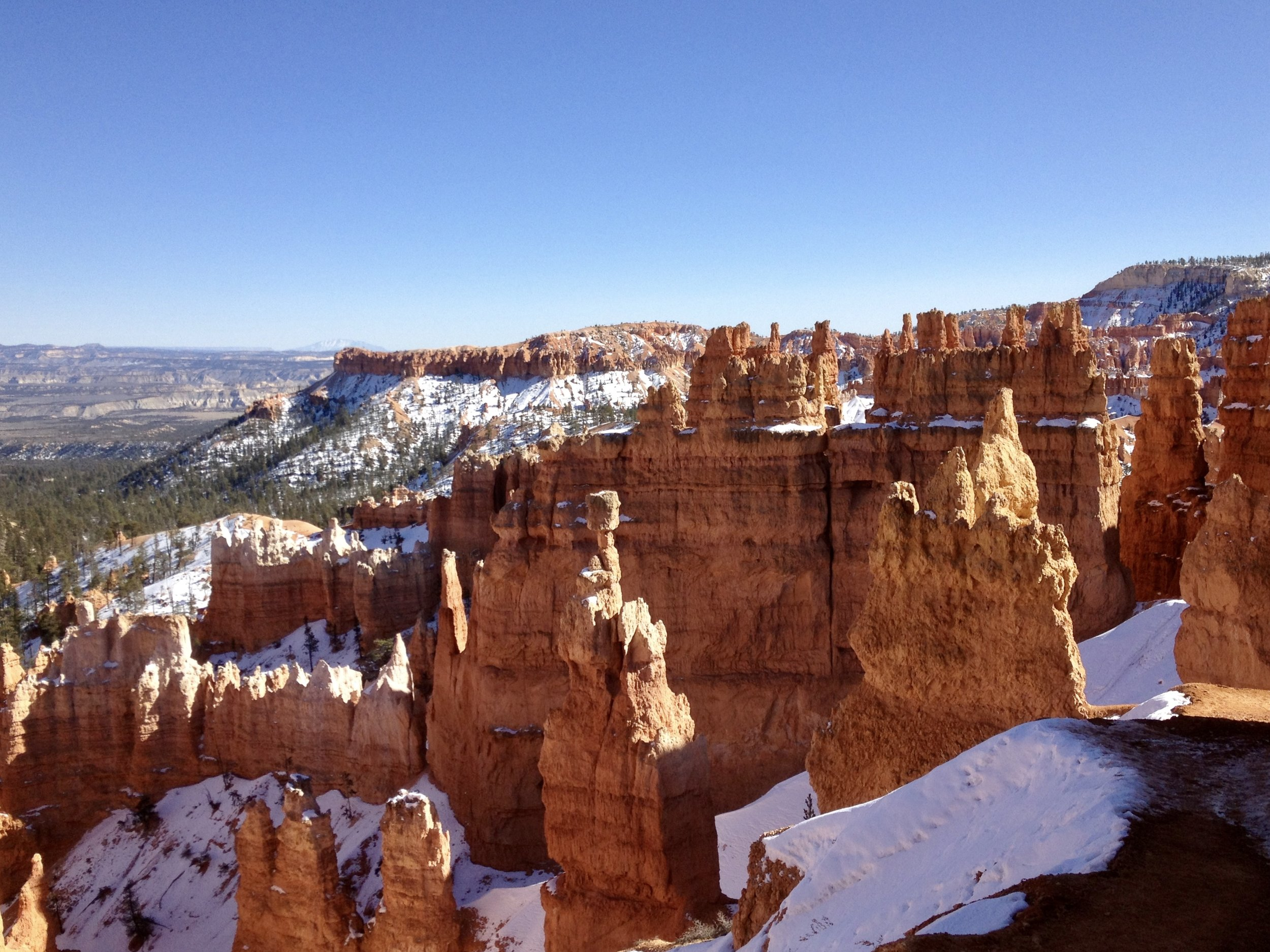 The colorful but delicate 'hoodoo' formations in Bryce Canyon