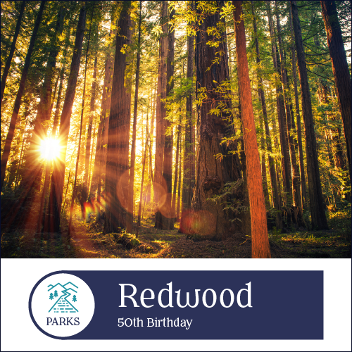 - By 1910, old-growth Redwood trees were at risk of disappearing forever after a century of logging. Celebrate the preservation of these majestic forests and miles of pristine California coastline at Redwood National Park during a milestone year.