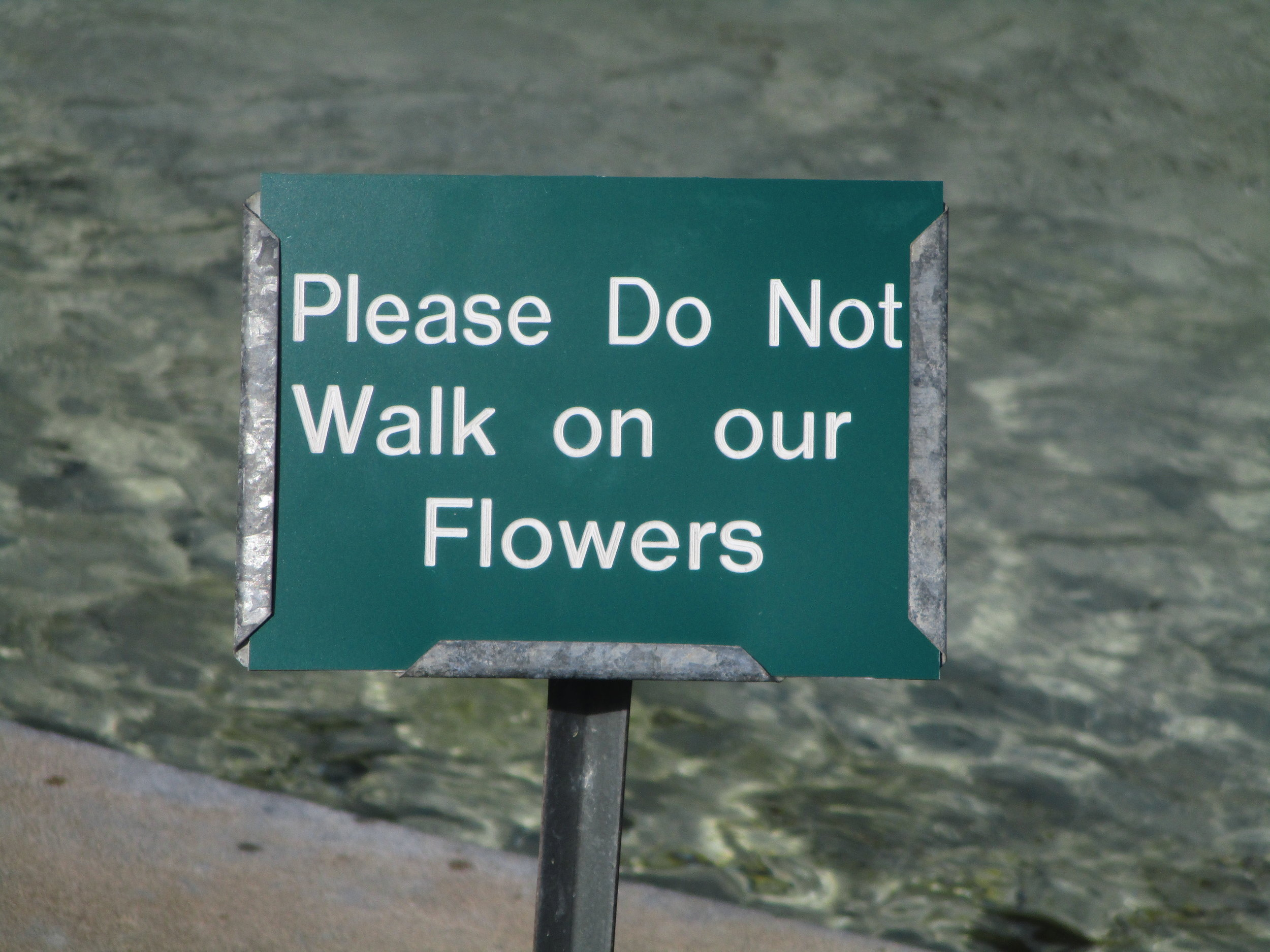 Seen in City Park, New Orleans. How sad that signs such as these are necessary.