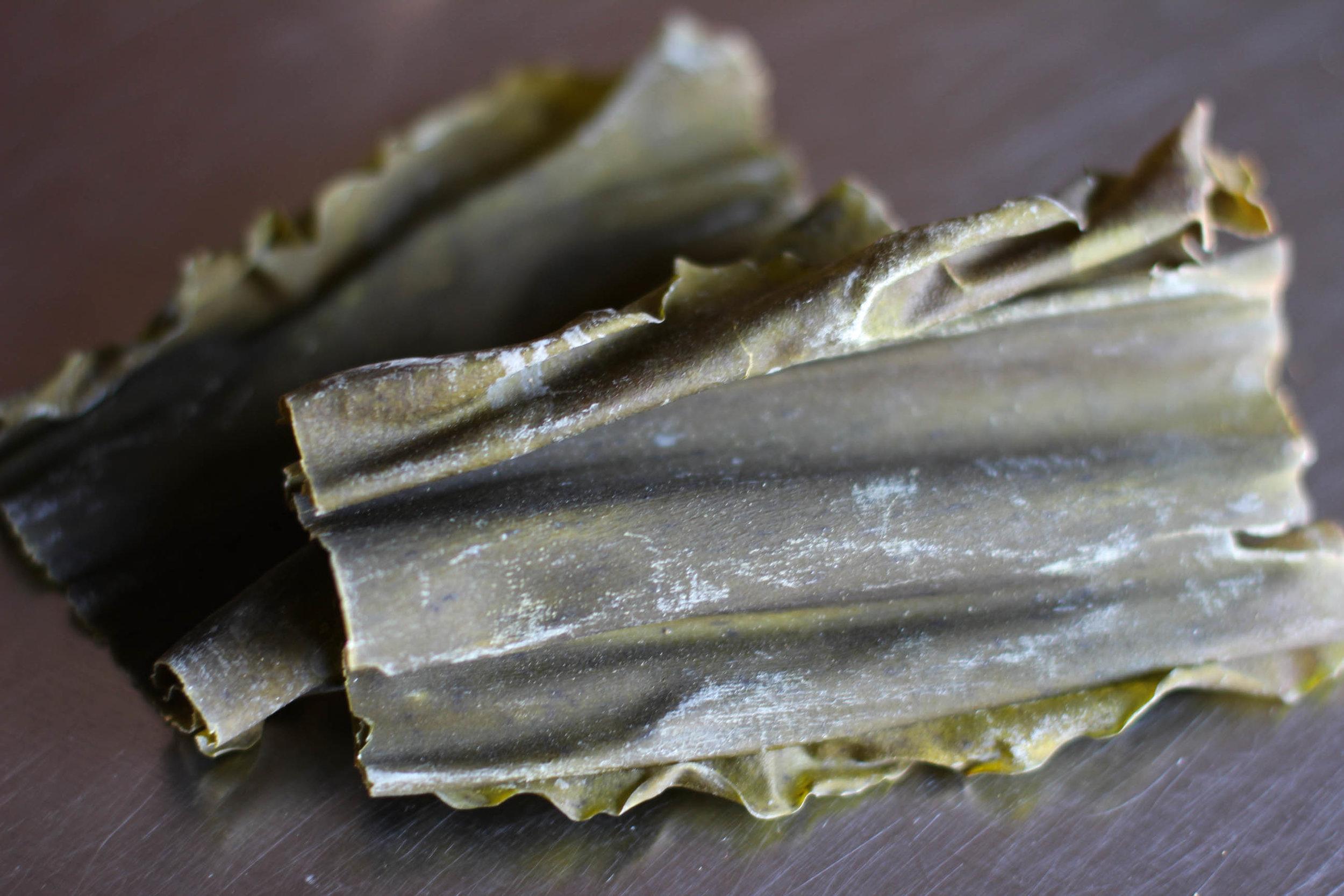 art-misc-kombu kelp.jpg