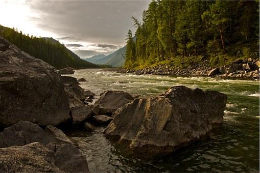 river rocks trees.jpg