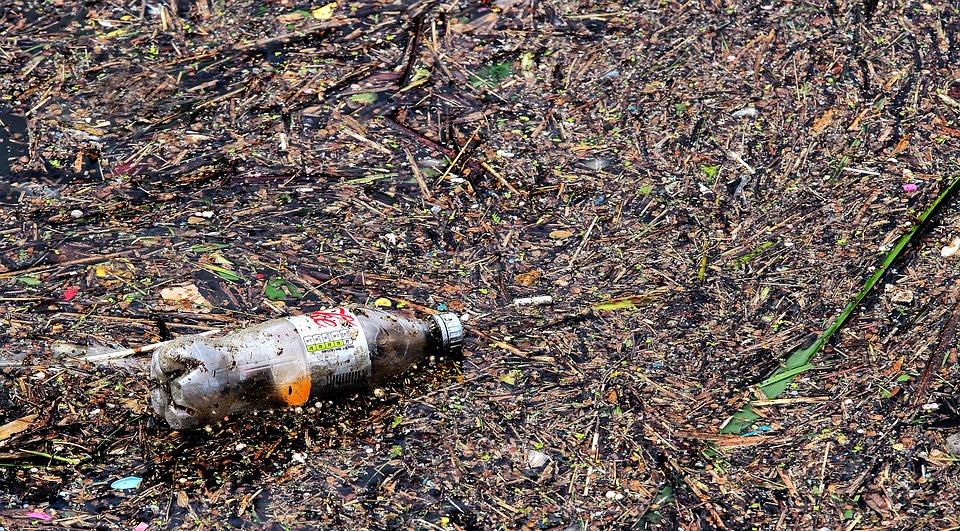bottle-2349136_960_720.jpg