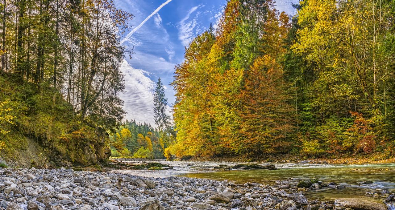river autumn.jpg