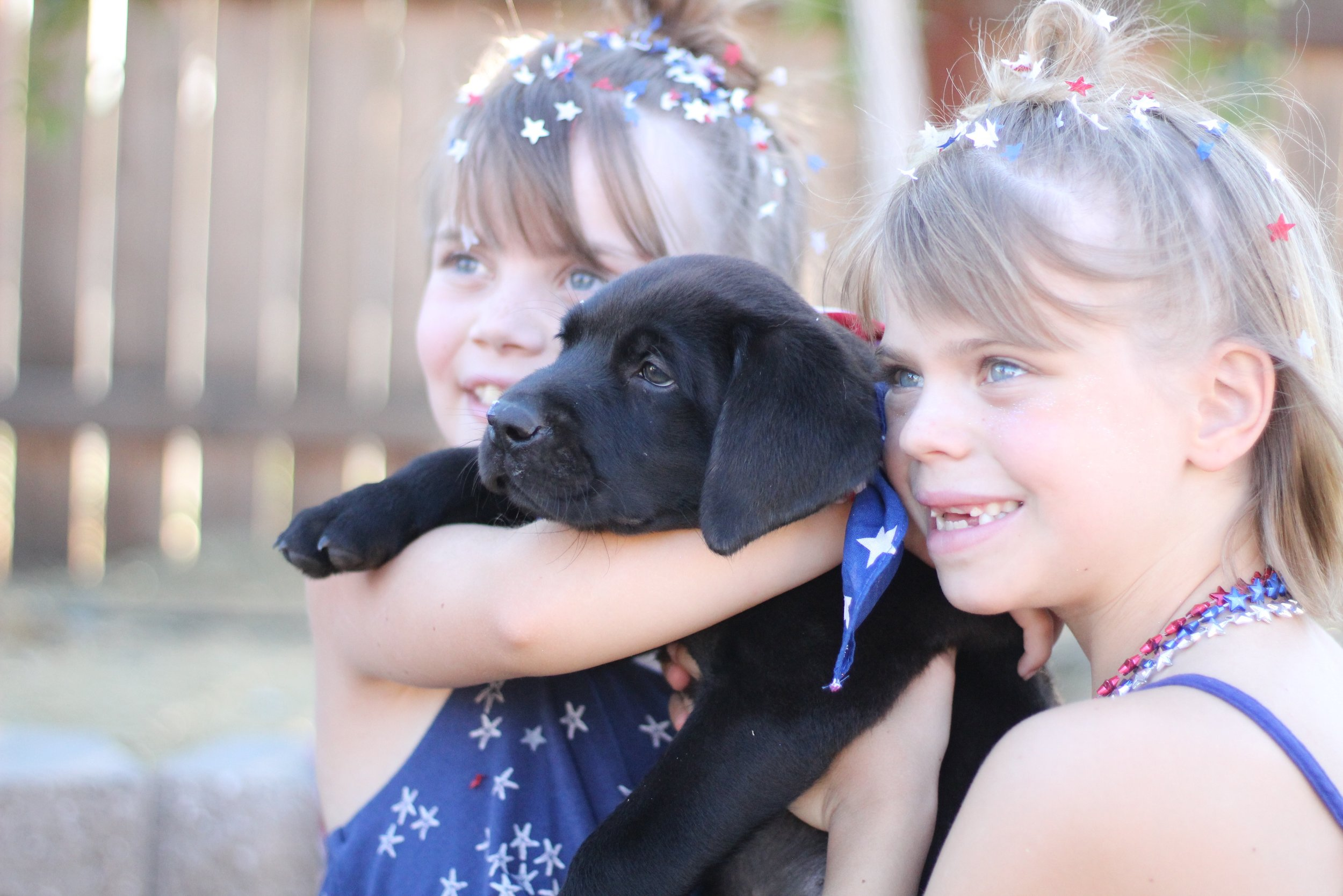 """Puppy Diesel and Sidnee & Finlee (our neighbors and """"adopted"""" kids)"""