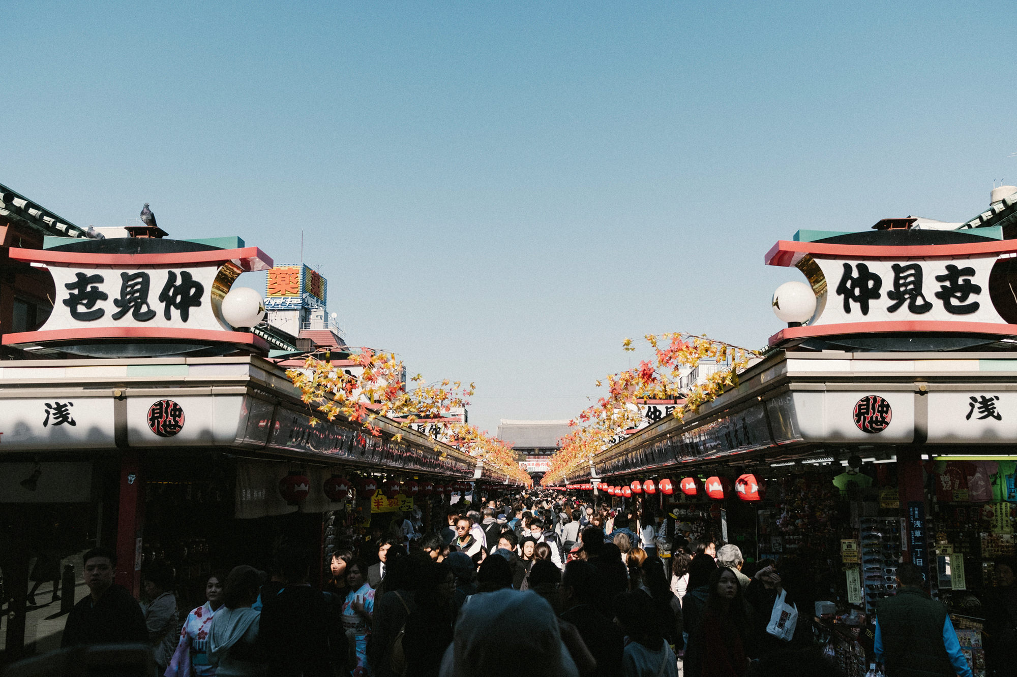Tokyo David Guenther -012.JPG