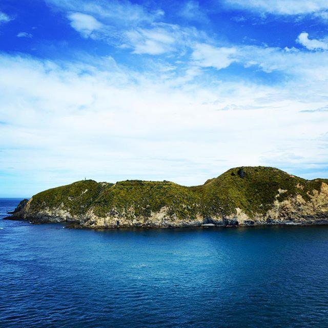 En route to the North Island #NZFieldwork