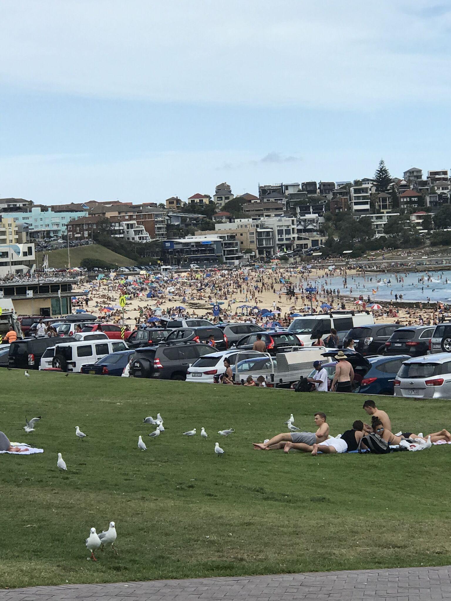 Bondi Beach -