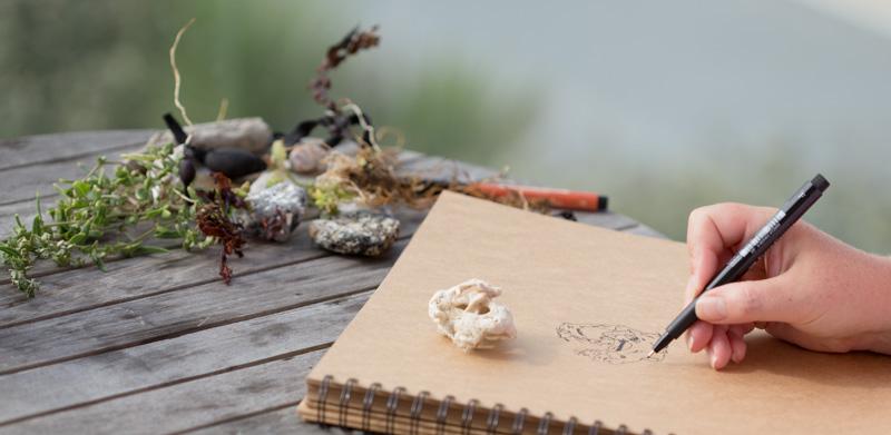 nature journaling at the beach