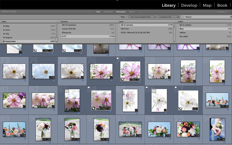 """Here I've searched in Lightroom for images by keyword (""""flower""""), date (Sept 2016), camera (XT1) and tag (blue for 'shortlisted'). I could carry on narrowing by lens used, aperture, shutter speed, ISO, flash state, file type, map location, aspect ratio and more. The flags are my """"picks"""", and I can also assign star ratings from 0-5."""