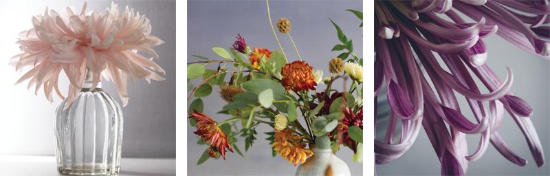 best floral instagram hashtags