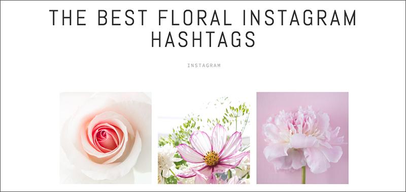 best floral instagram hashtags.jpg