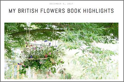 BFB highlights border.jpg