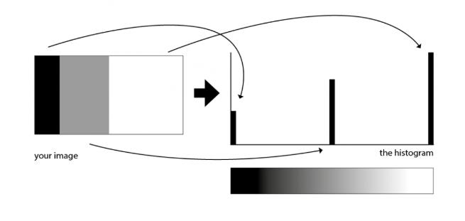 histogram 5.png