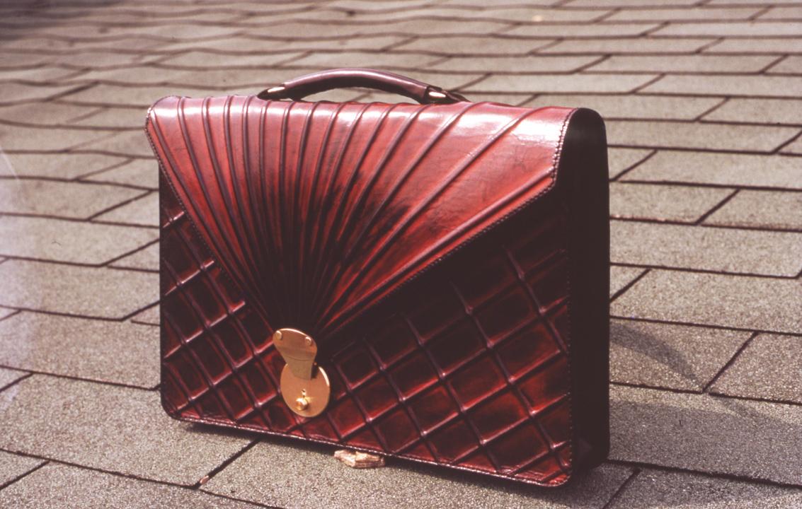 briefcase_2.jpg
