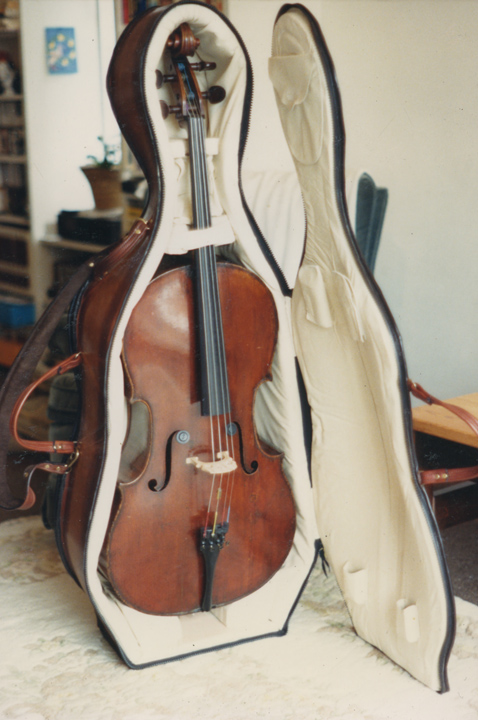 cello_case_3.jpg