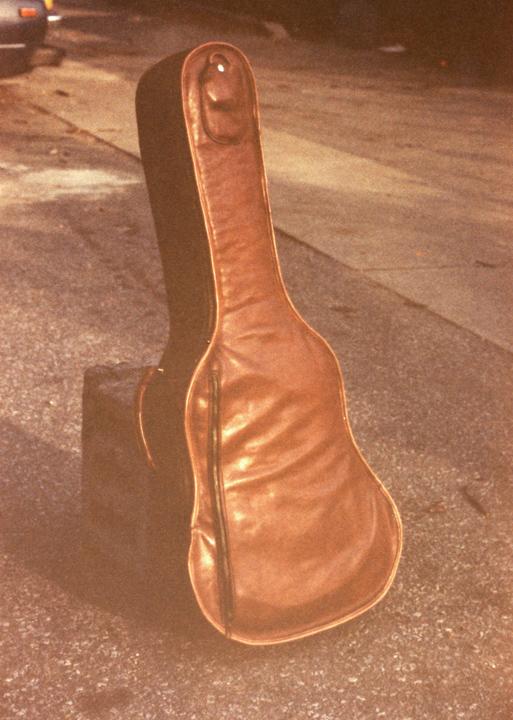 guitar_case_48.jpg