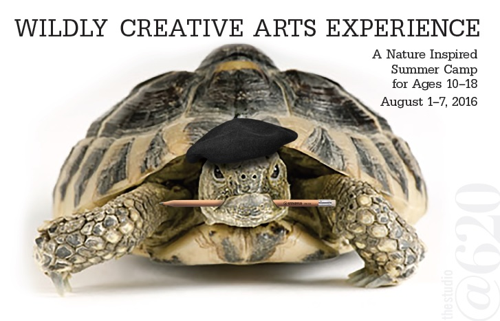 In order to accommodate as many young people as possible into this unique opportunity, The Studio has broadened the accepted age range of participants and changed the dates to later in the summer.  We're excited to share the unique qualities of Florida wildlife with residents of our community through creative expression!