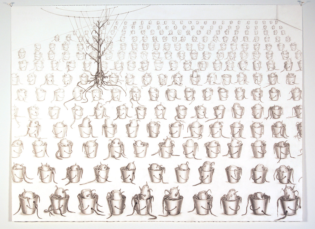 "Drawing of ""The Last Tree"", 2010. Several drawings of the installation along with details of the stumps will be included in the exhibition."