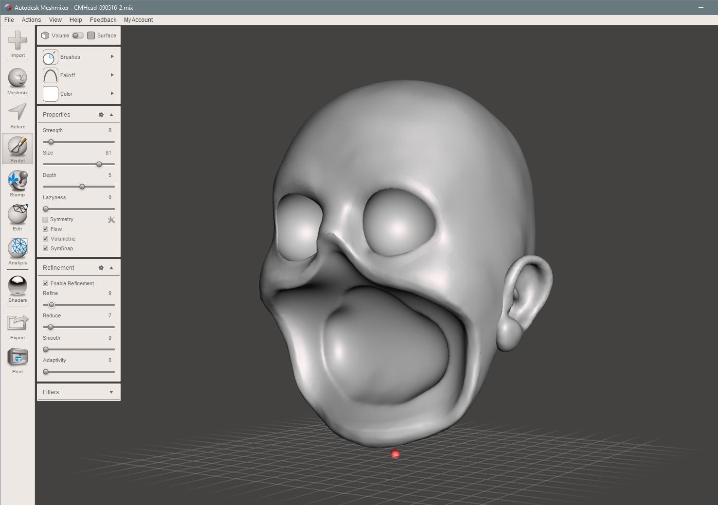 Finished Skull form