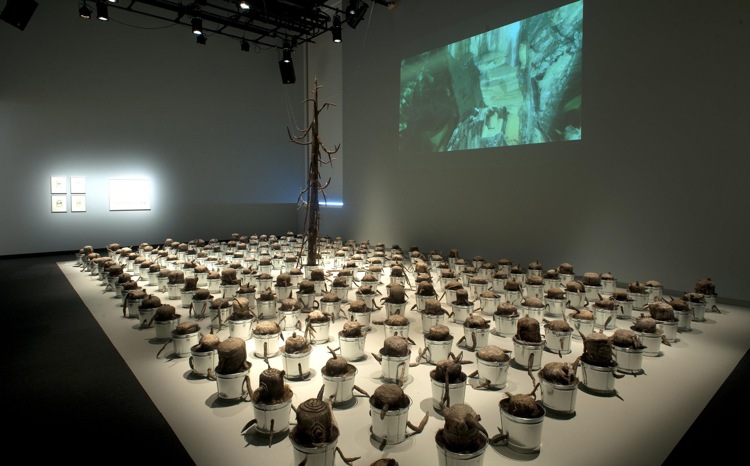 """The Last Tree"""" installed at the Burchfield Penney Art Center Buffalo NY September 9 - February 2017"""