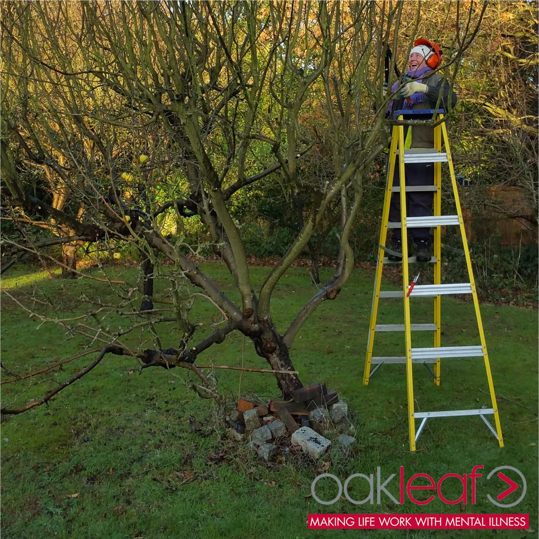 Oakleaf-Horticulture.jpg