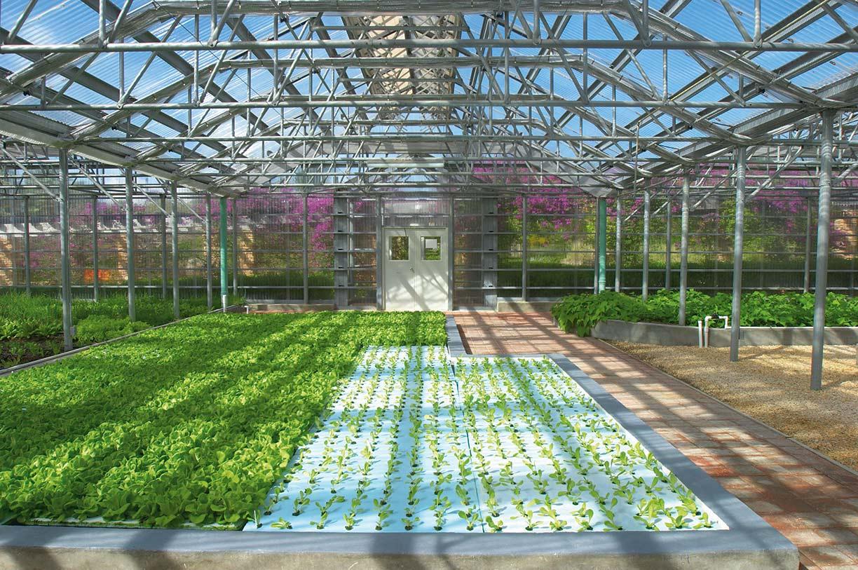 CuisinArt hydroponic farm