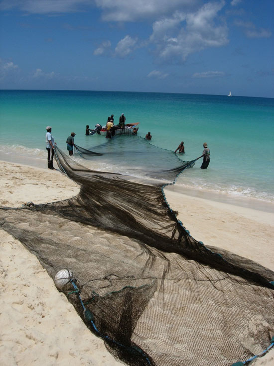 Fishermen in Anguilla ready the nets!