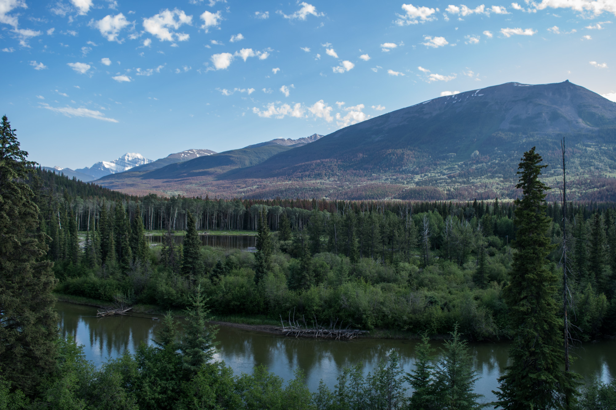 The Miette River running through the valley in Jasper National Park. In the background is the Trident Range of the Canadian Rocky Mountains.
