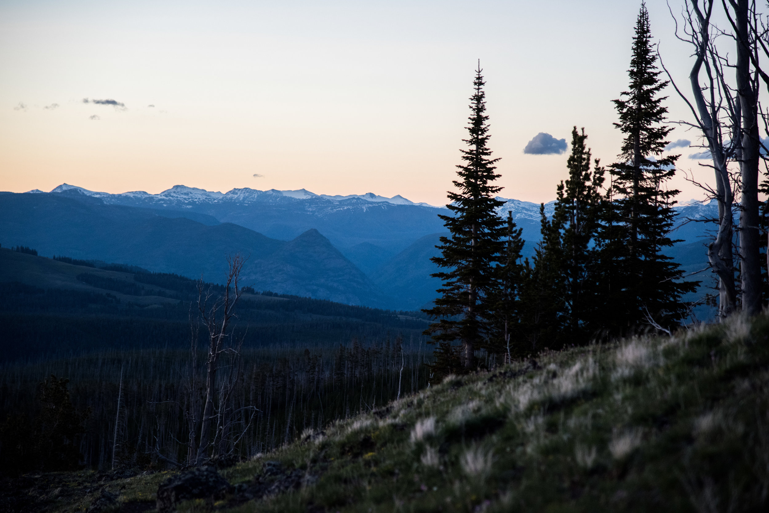The view from a pullout on Dunraven's Pass in Yellowstone National Park.