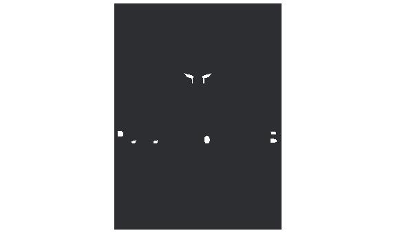PF-homepage-logos-dark-grey_0007_-2_0009_ParalympicsGB.png