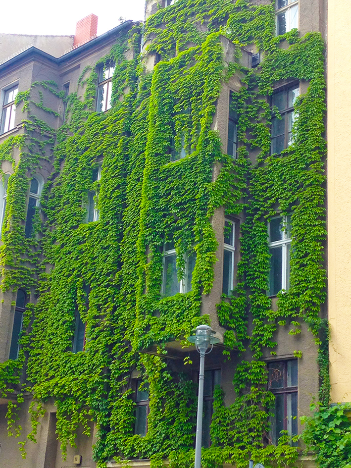 Berlin Ivy House