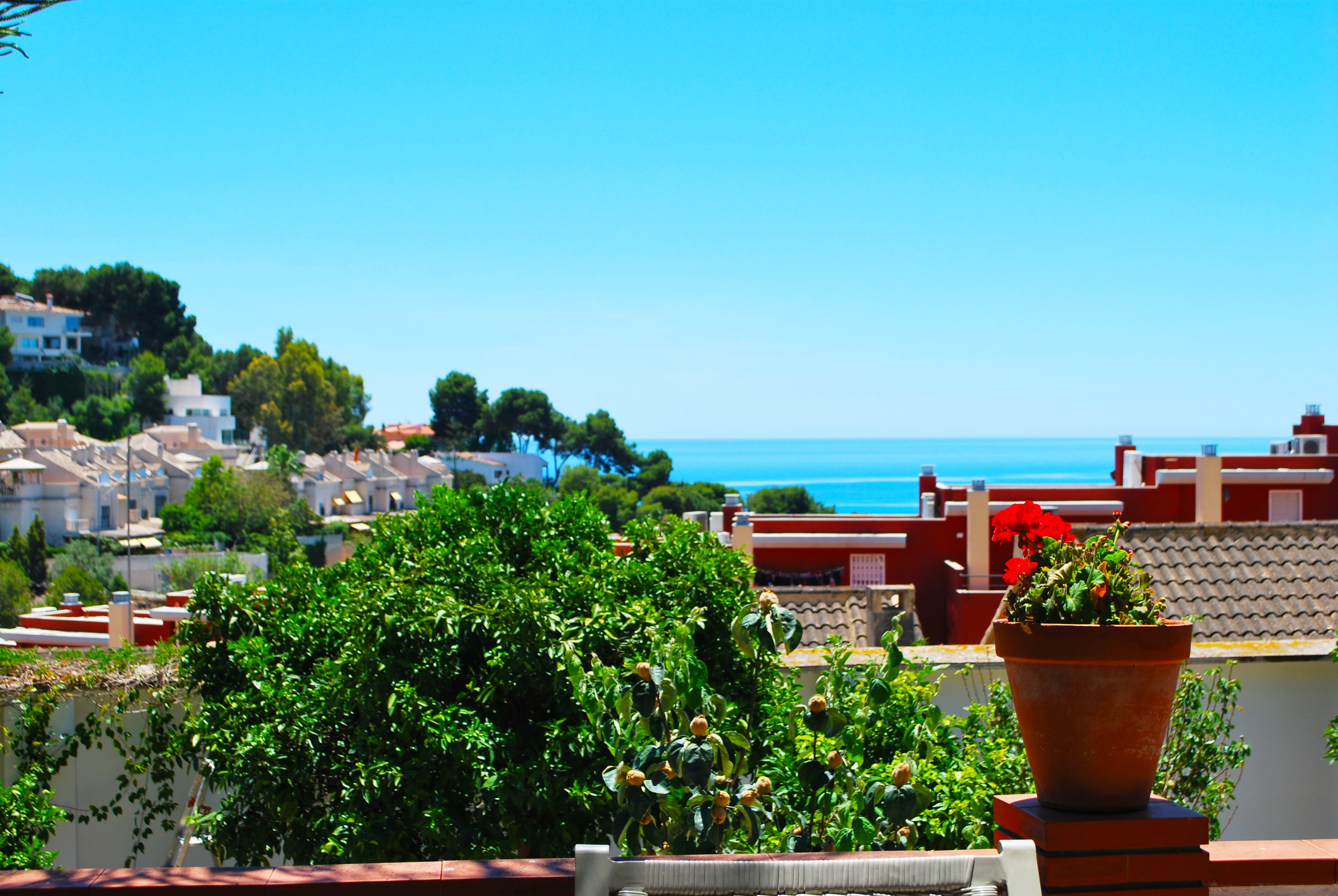 One of the stunning views from Hacienda Clavero