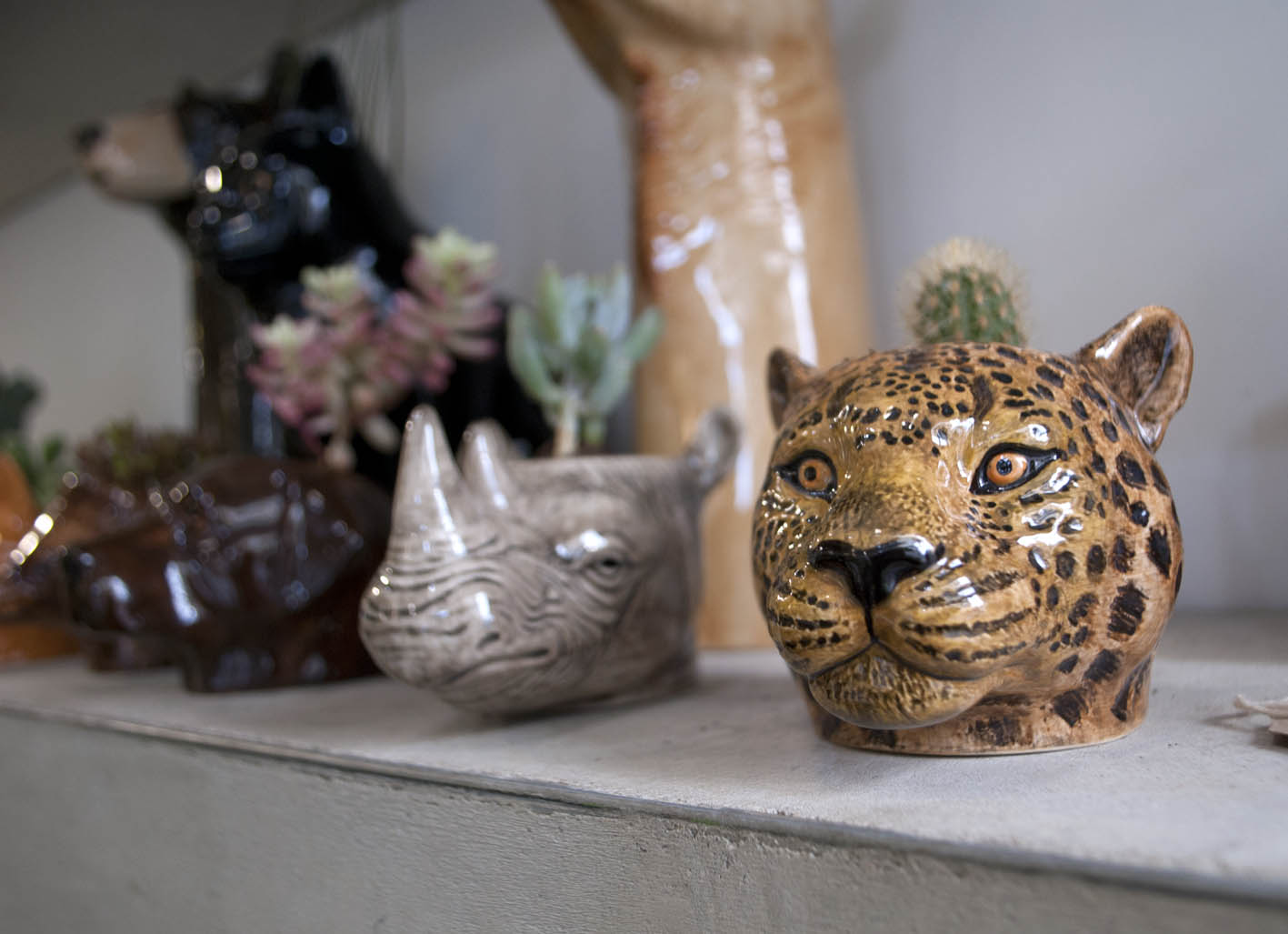More quirky animal pots