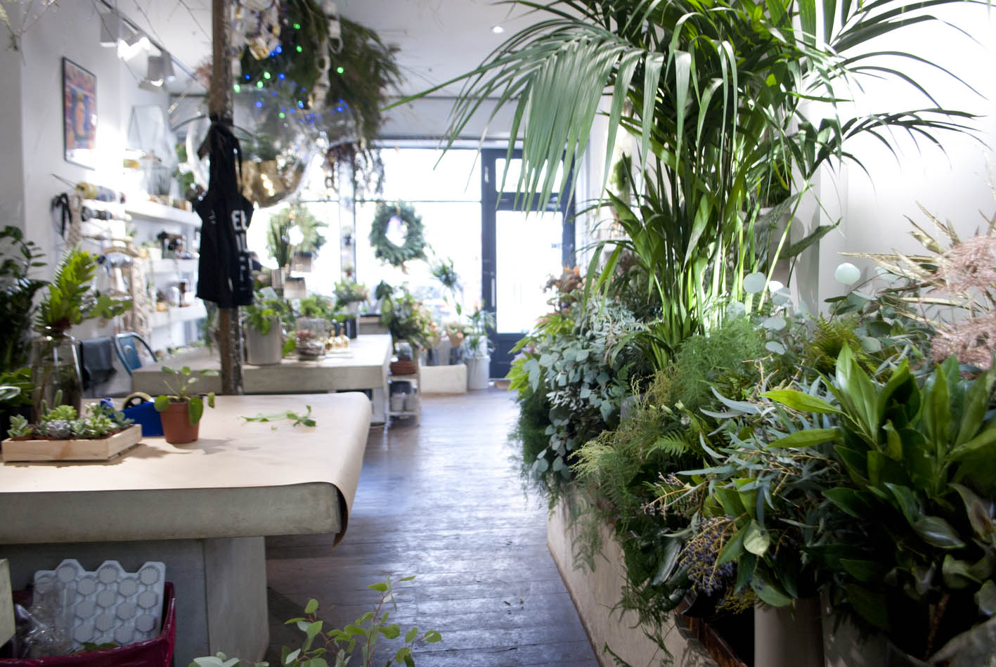 Gorgeous textures and foliage inside the shop