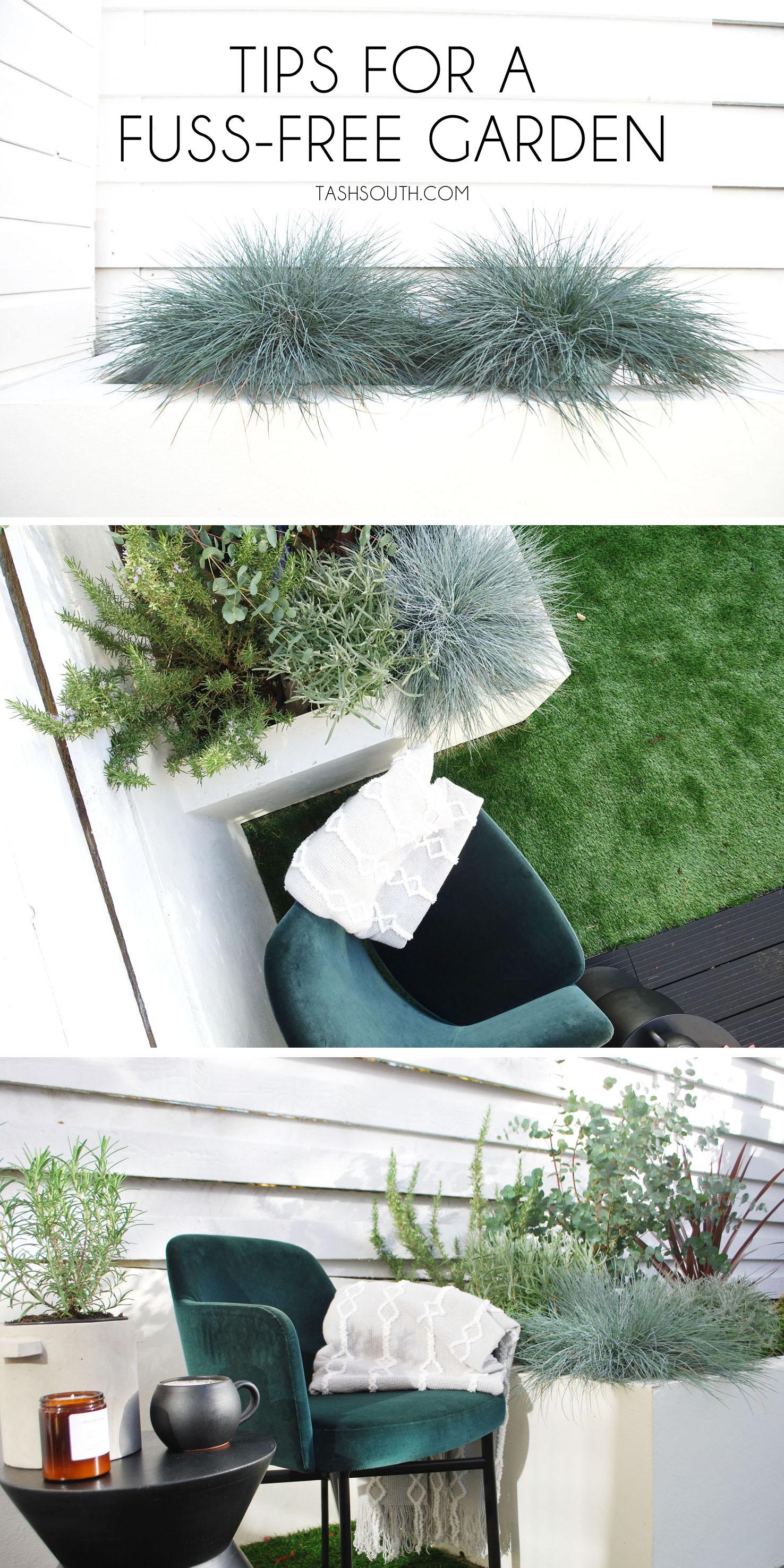 tips for a fuss free garden