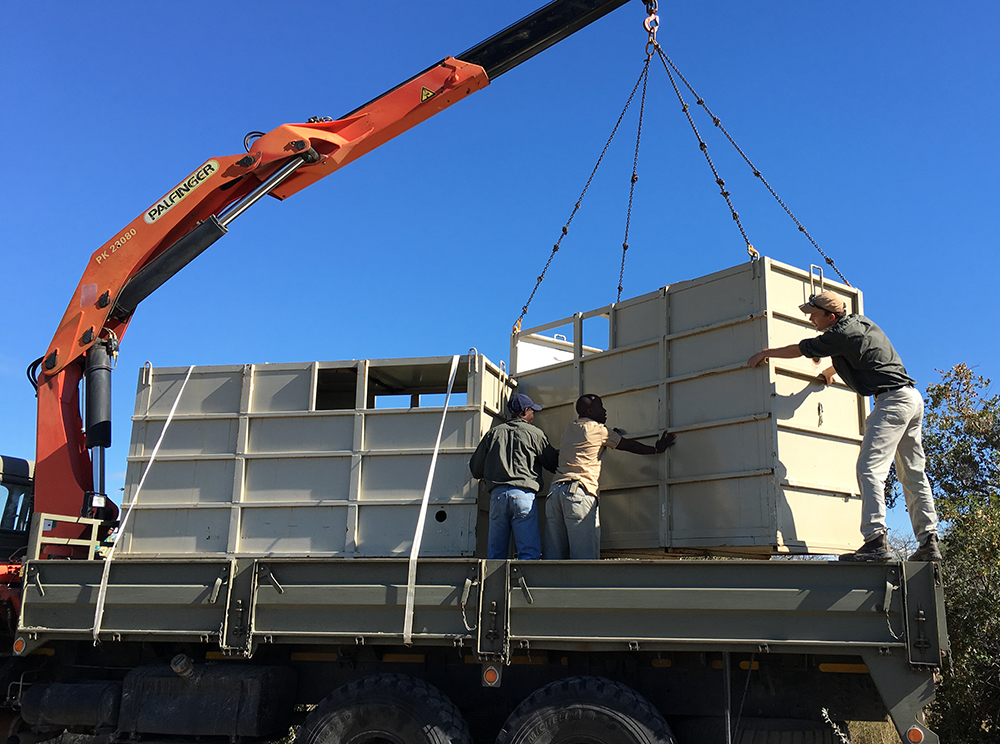 The rhinos' crates are carefully loaded onto the trucks for the first stage in their journey. They are kept separate so they do not accidentally crush or spear one another with their horns.