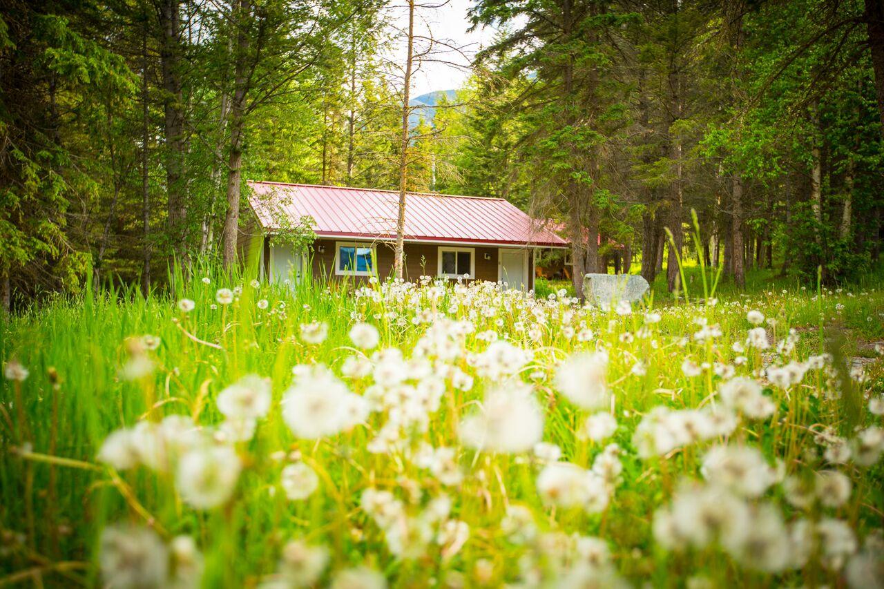 cosy cabins2.jpg